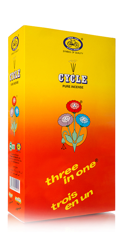 Cycle 3 in 1